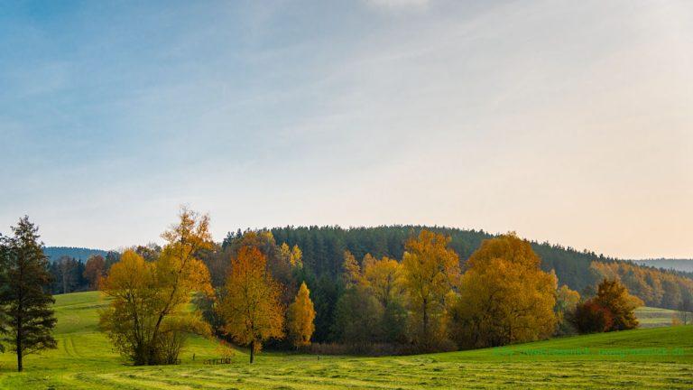 Herbstlandschaft nahe Kolkwitz